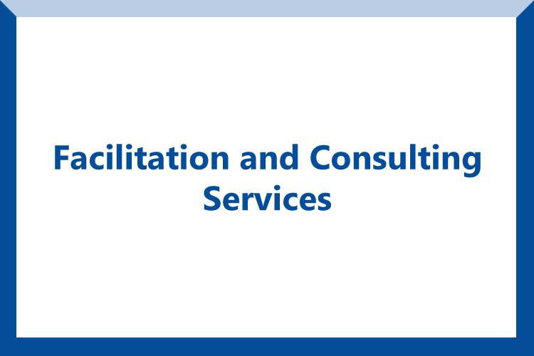 facilitation and consulting services button